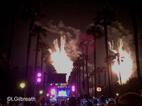 Disneyland 10th Annual Half Marathon fireworks
