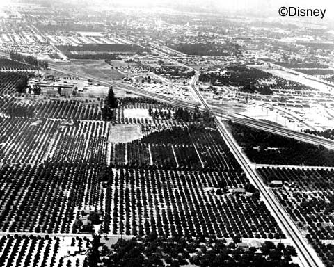 Disneyland orange groves from air