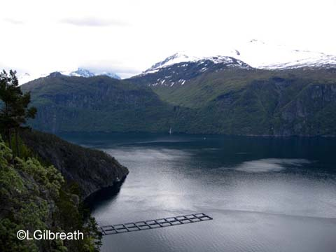 Norway fish farm