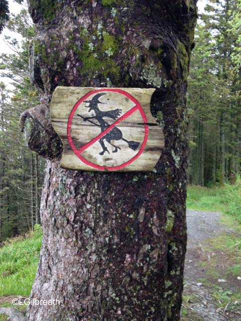 No flying witches