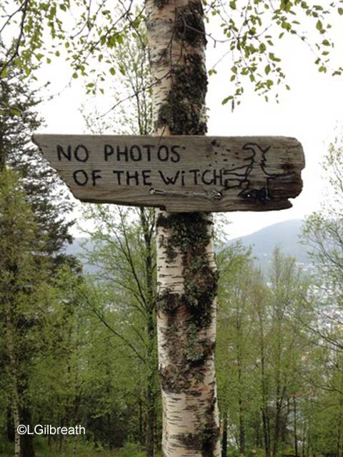 No witch photos