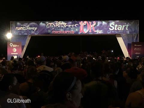 2017 Enchanted 10K
