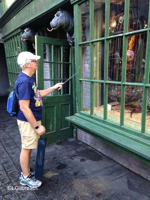 Universal Studios Diagon Alley interactive wand
