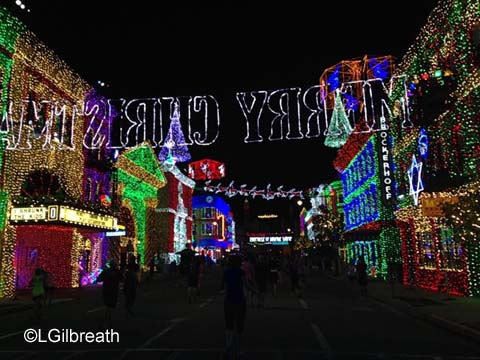 Wine and Dine Half Marathon Osborne Lights