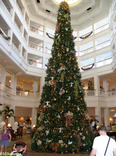 Grand Floridian Tree