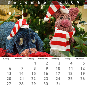 December 2009 Jewel Case Calendar