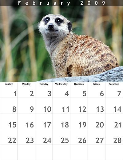 February 2009 8.5x11 Calendar