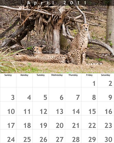 April 2011 8.5x11 Calendar