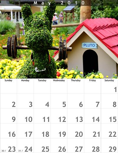 May 2010 8.5x11 Calendar
