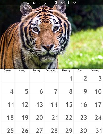 July 2010 8.5x11 Calendar