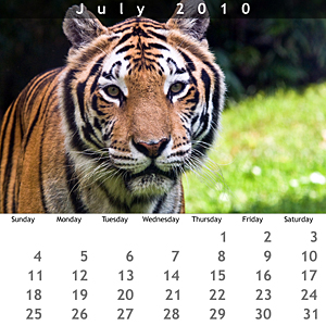 July 2010 Jewel Case Calendar