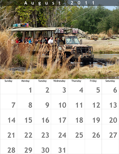 August 2011 8.5x11 Calendar