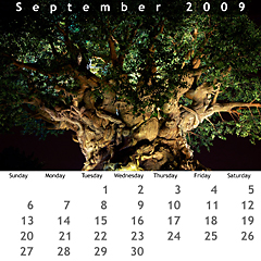 September 2009 Jewel Case Calendar