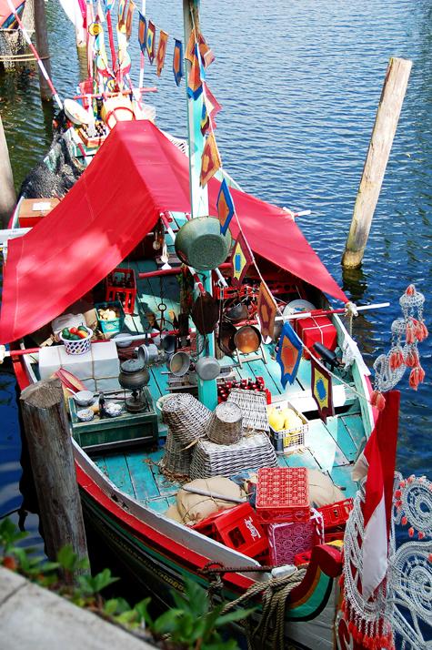 Boat on Discovery River in Disney's Animal Kingdom