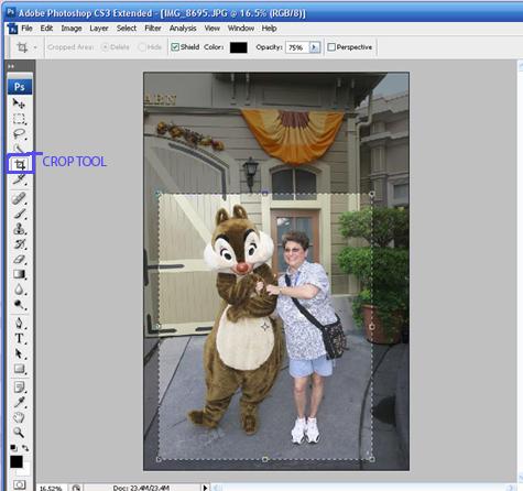 CropScreenCapture1.jpg