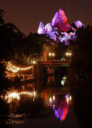 Expedition Everest Reflection