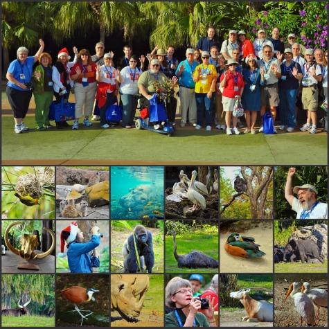 AllEars December to Remember Photowalk in Disney's Animal Kingdom, Walt Disney World, Orlando, Florida.