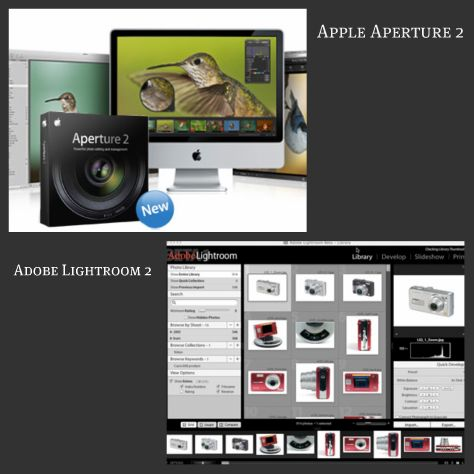 Photo management software from Adobe and Apple.