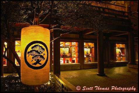 A lighted paper lantern hanging from a tree in front of the Mitsukoshi Department Store in Epcot's Japan pavilion, Walt Disney World, Orlando, Florida