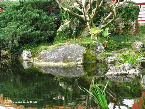 lkb-ChinaPond-Foliage.jpg