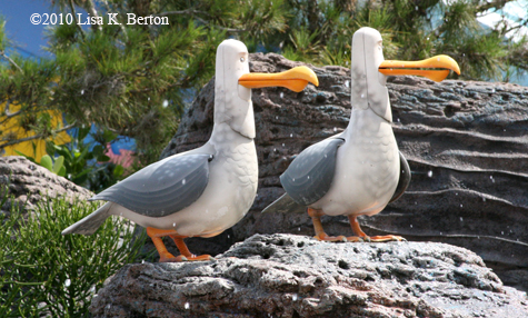 lkb-LivingSeas-WetSeagulls.jpg