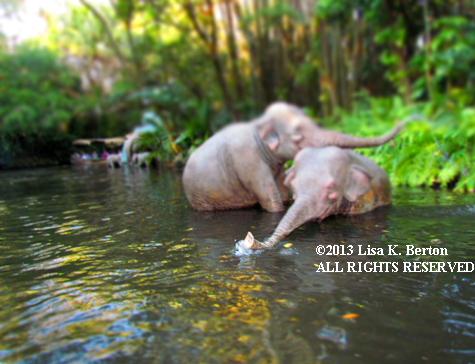lkb-MiniatureJungleCruise-Elephants.jpg