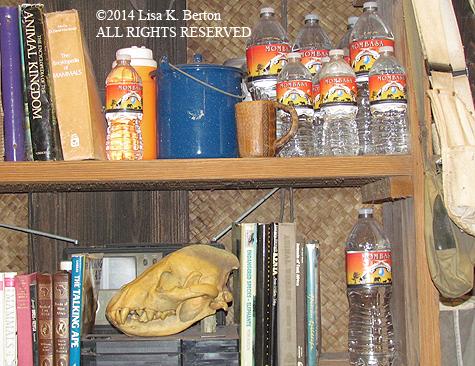 lkb-PanganiTrail-Bookcase.jpg