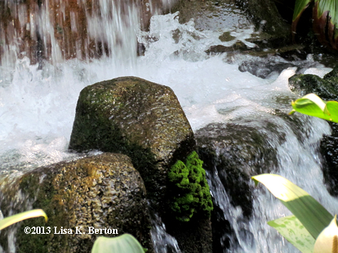 lkb-Waterfalls-MKLittleMermaid.jpg
