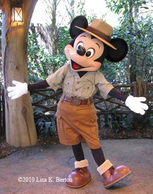 lkb-shade-flashoff-Mickey.jpg