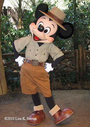 lkb-shade-flashon-Mickey.jpg