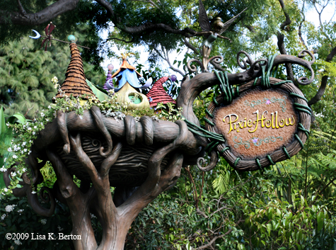 lkb_bday4_pixiehollow_sign.jpg
