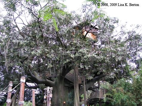 lkb_swissfam_tree.jpg