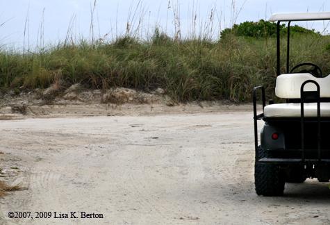 lkb_wonder_golfcart.jpg