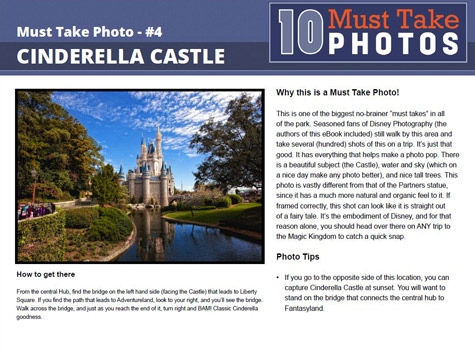 Cinderella Castle Must Take Photo page