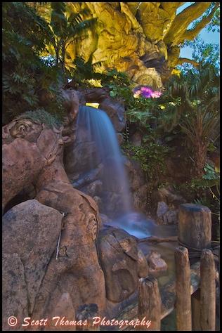 Nighttime photo of a Tree of Life waterfall in Disney's Animal Kingdom, Walt Disney World, Orlando, Florida.
