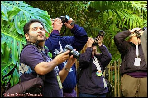 Pixelmania photographers at Disney's Animal Kingdom, Walt Disney World, Orlando, Florida.