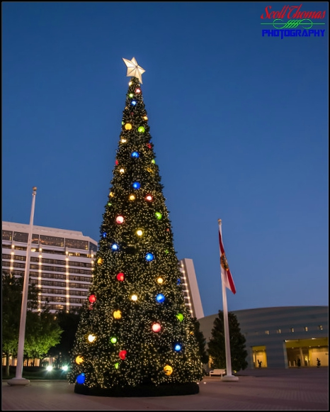 Christmas tree outside Disney's Contemporary Resort, Walt Disney World, Orlando, Florida