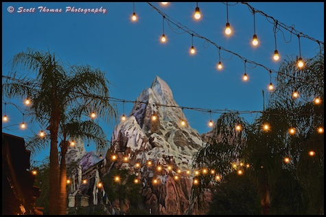 Blue hour at Expedition EVEREST in Disney's Animal Kingdom, Walt Disney World, Orlando, Florida
