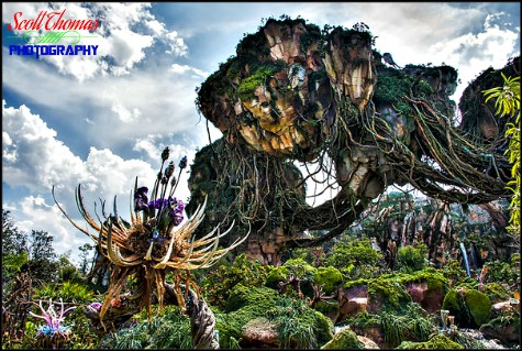 Grinch tree and Floating Mountains in the Valley of Mo'ara in Pandora at Disney's Animal Kingdom, Walt Disney World, Orlando, Florida