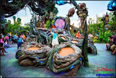 Drums Of Pandora In Disney S Animal Kingdom Allears Net