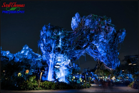 Floating Mountains at night inside Pandora in Disney's Animal Kingdom, Walt Disney World, Orlando, Florida