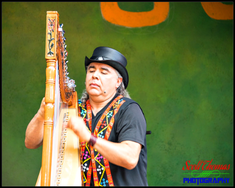 Musician playing the Paraguayan harp on Discovery Island at Disney's Animal Kingdom, Walt Disney World, Orlando, Florida