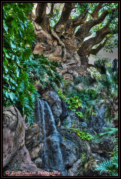 Waterfall at the base of the Tree of Life in Disney's Animal Kingdom, Walt Disney World, Orlando, Florida