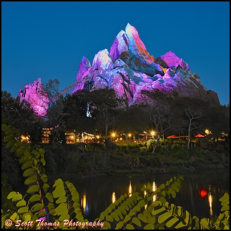 Blue Hour Sky over Expedition Everest in Disney's Animal Kingdom, Walt Disney World, Orlando, Florida