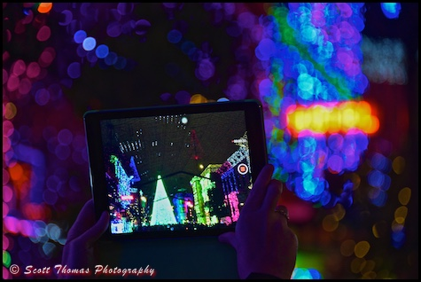 A guest uses a tablet to record the Osborne Family Spectacle of Dancing Lights in Disney's Hollywood Studios, Walt Disney World, Orlando, Florida