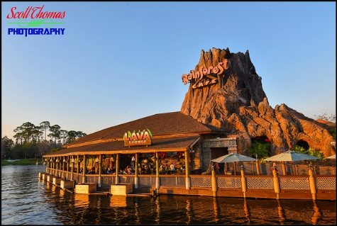 Rainforest Cafe restaurant at Disney Springs, Walt Disney World, Orlando, Florida