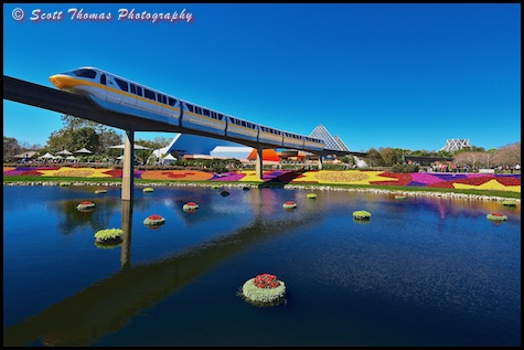 Monorail Yellow moves over the Flower and Garden Festival in Epcot, Walt Disney World, Orlando, Florida