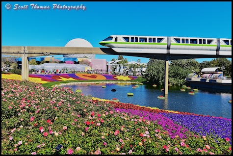 Monorail Green moves over the Flower and Garden Festival in Epcot, Walt Disney World, Orlando, Florida