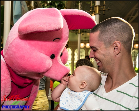 Child meeting Piglet in the Crystal Palace Restaurant at the Magic Kingdom, Walt Disney World, Orlando, Florida
