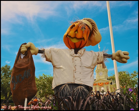 Baker Scarecrow on Town Square in the Magic Kingdom, Walt Disney World, Orlando, Florida.